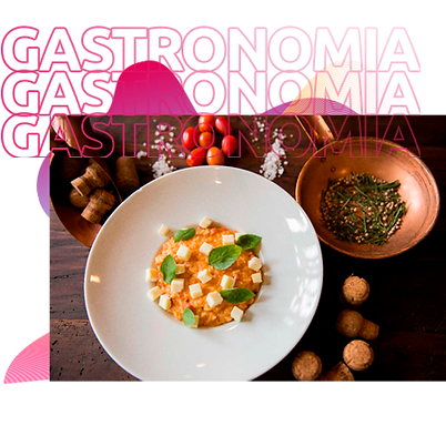 GASTRONOMIA.png
