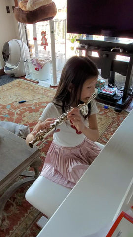 A Parent's Guide to Beginner Flute Lessons