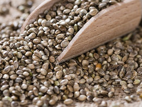 Importation of Hemp Seeds