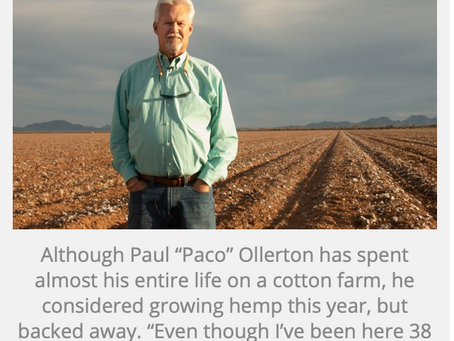 Arizona Farmers' Perspectives on Entering the Industrial Hemp Economy