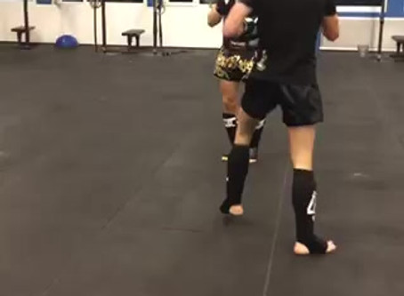 GDELITE Sparring - Training