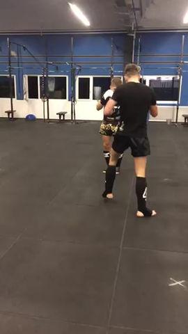 GDELITE Sparring - Training