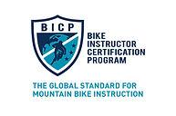 BICP-logo-global-standard-teal-2-600x444