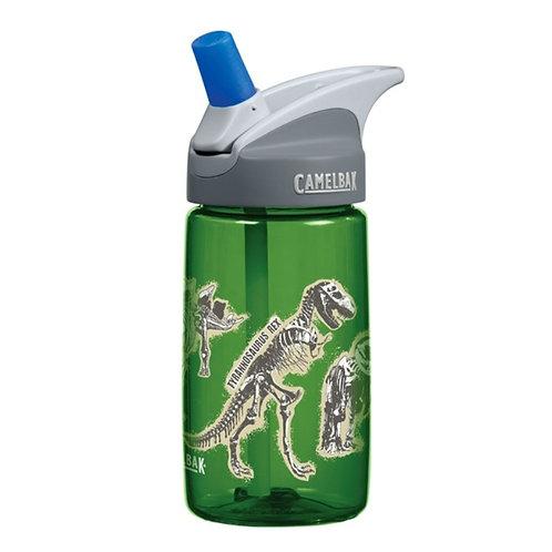 Camelbak dinosaur water bottle