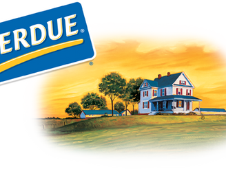 Upgrades at a Perdue Processing Plant utilizes DuraTrench