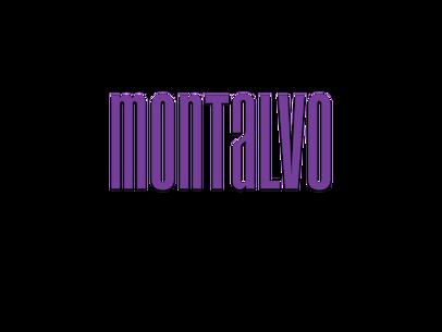 MI.ORG Logo