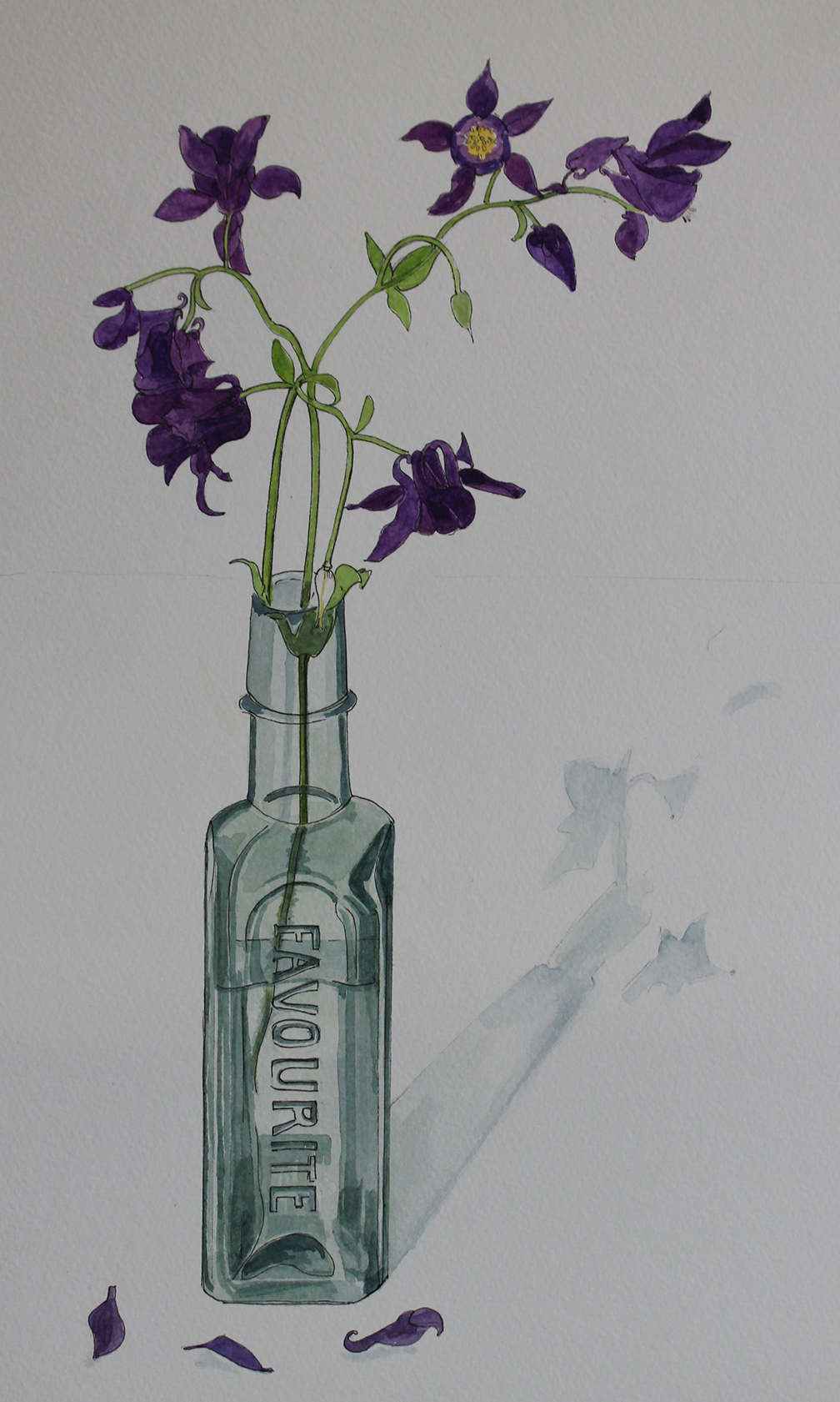 Favourite Flowers - Aquilegia