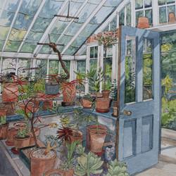 Greenhouse at Bryan's Ground