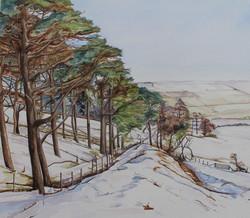 Winter on Llandfair Hill, Offas Dyke