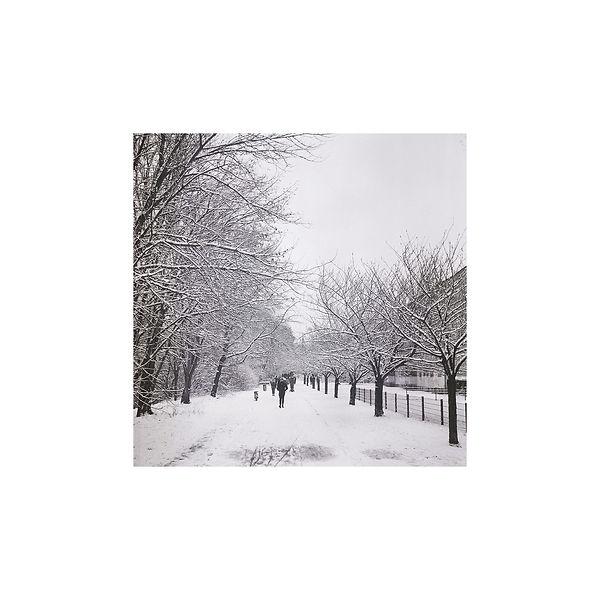 insta snow 33333 copy.jpg
