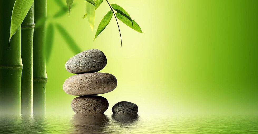 Bamboo with grey rocks - 1.jpg