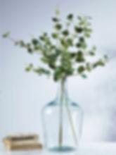 eucalyptus in vase.jpg