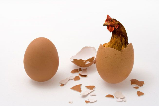 Which Came First? The Chicken Or The Egg? Motivation Or Inspiration?