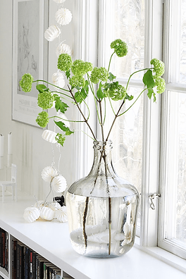 spring-green-flowers-in-white-window-sil