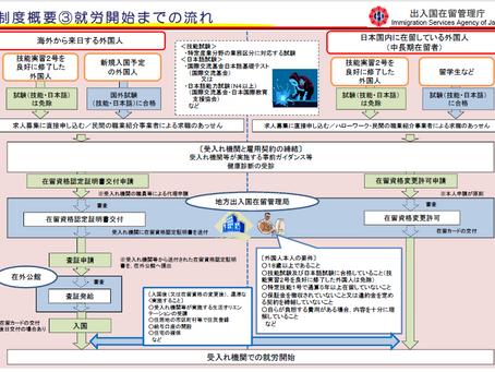 [Tokutei Gino] Ai có thể tham dự kì thi liên quan tới kĩ năng đặc định ? 特定技能に関する国内試験の受験資格