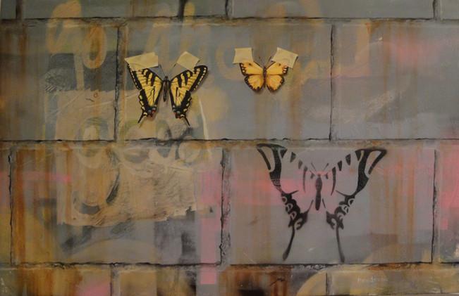 Swallowtails on Cinderblock