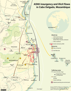 Jihadist Insurgency and Illicit Flows in Pemba, Mozambique