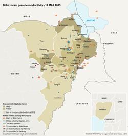 Boko Haram conflict, 2015