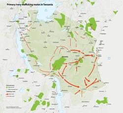 Tanzania-trafficking-clean-RSZ