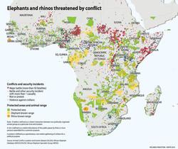 Elephants and rhinos threatened