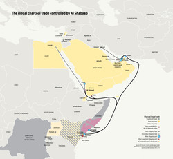 Al-Shabab illegal charcoal trade
