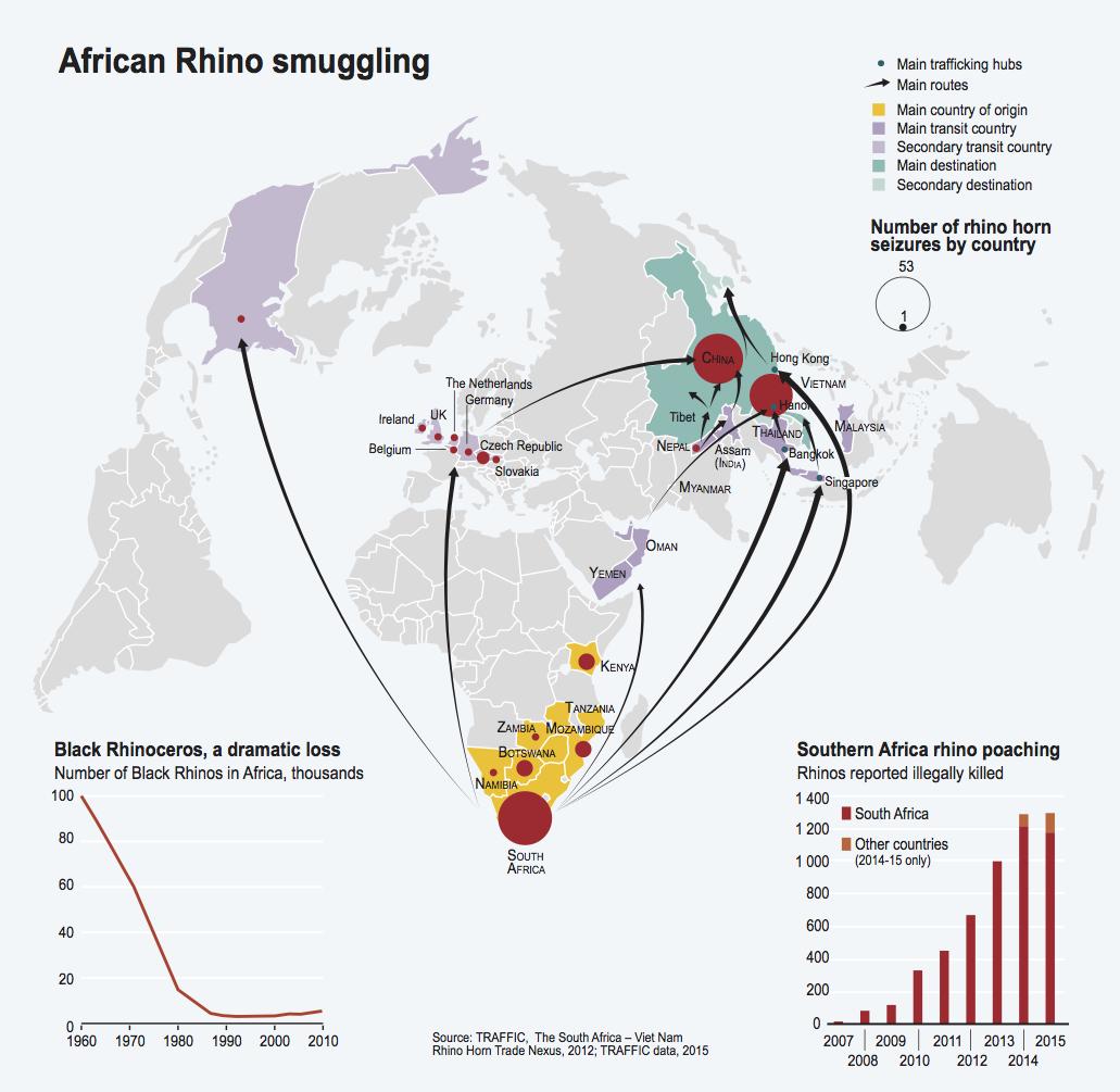 African Rhino smuggling
