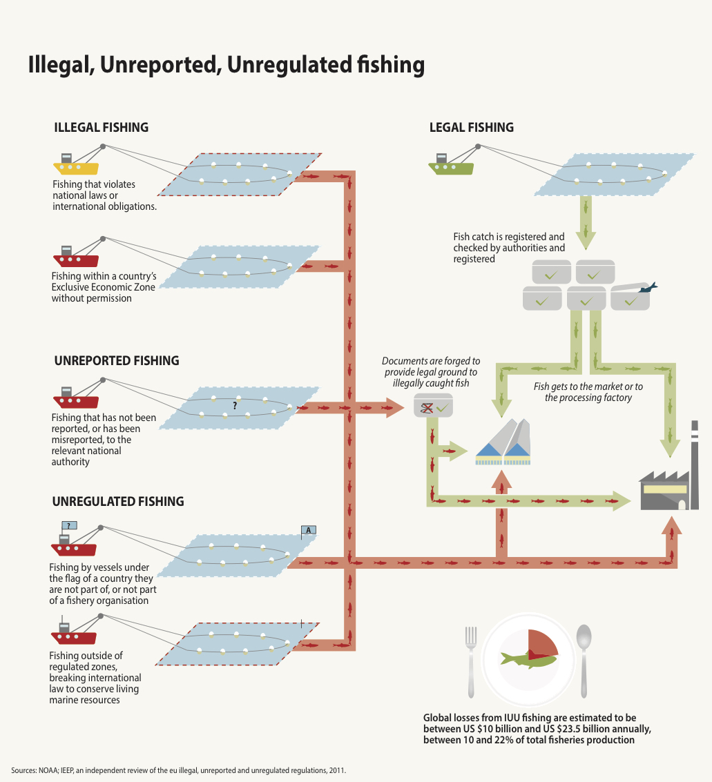 How does illegal fishing work