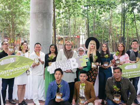 Planting the seeds of the Belum Forest Friends
