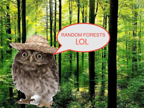 What are forest reserves reserved for?