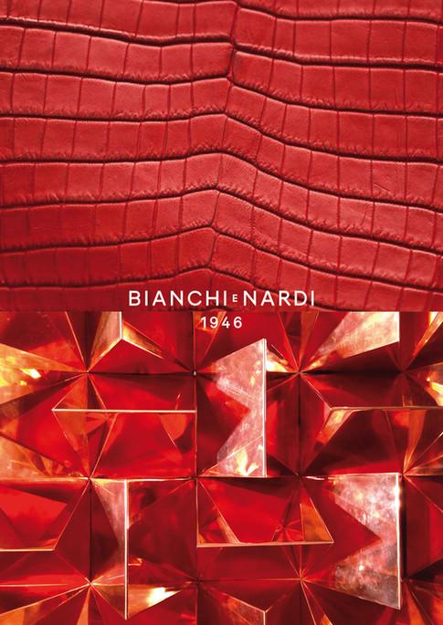 Bianchi e Nardi. Brandbook (cover)