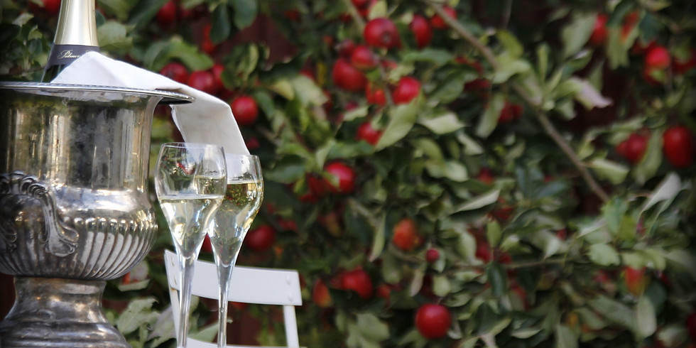 Vinprovning - tema Champagne och mousserande!