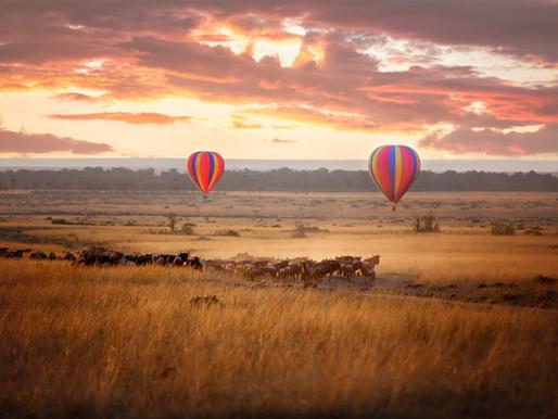 Maasai Mara,                                              the ultimate safari destination