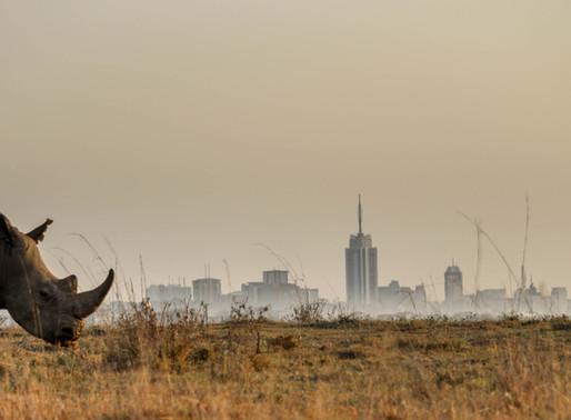 "NAIROBI NATIONAL PARK, ""The world's only wildlife capital"""