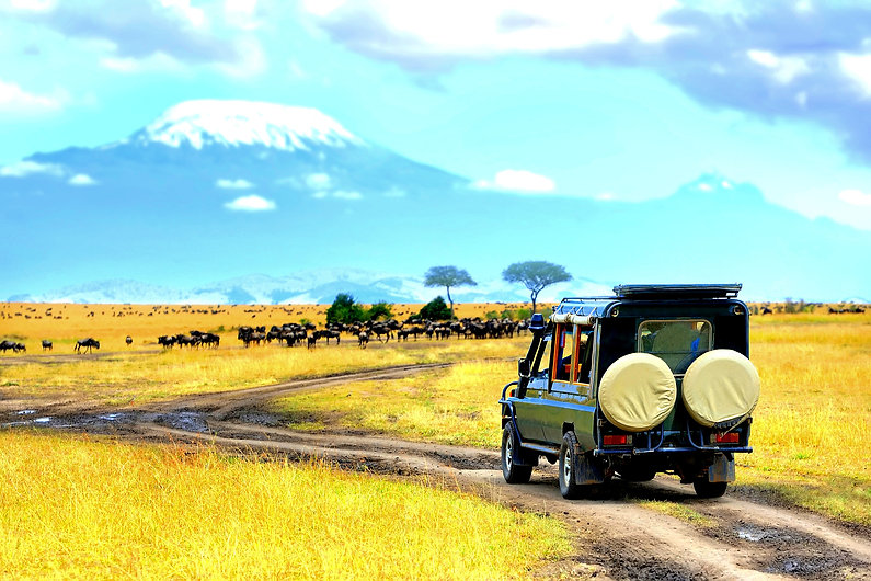 Africa safari in a kenyan National park