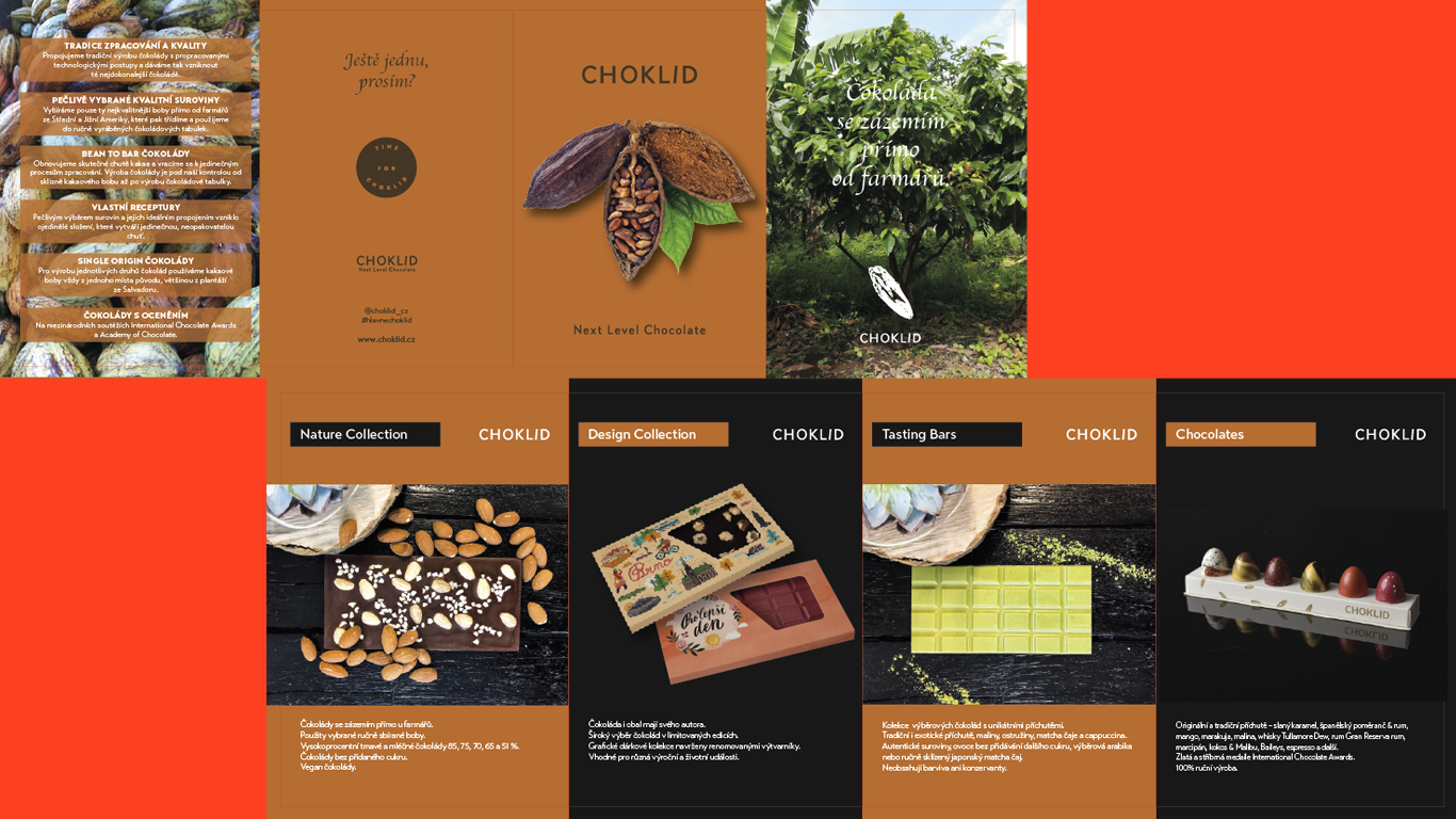 choklid flyer.png