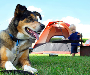 10 Unwritten Camping Rules to Remember