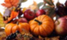 Fall at Ol MacDonalds Farm