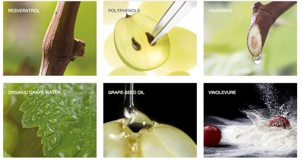 Caudalie Ingredients pic.png