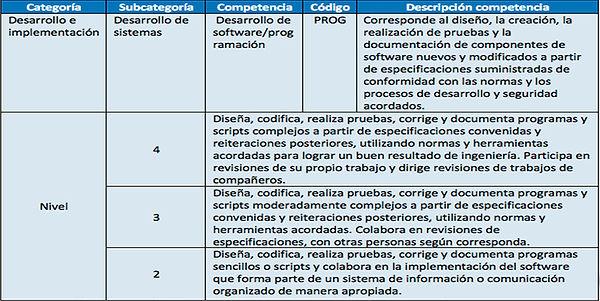 Competencias PROG Analista bANNER.jpg