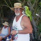 Bob_Norway_parrot.jpg