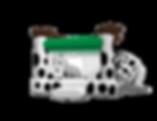 saltarin_perro_lineaeconomica03_0.png