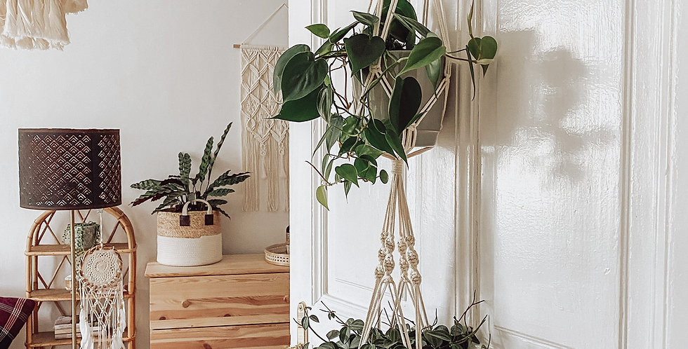 Makramee Pflanzenhänger doppelt
