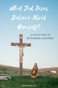 What did Jesus believe about himself? What did Jesus see his mission to be? He strode through the land telling the people to repent and prepare for the kingdom of heaven. Did he go to Jerusalem hoping to preach or be crowned king, and ended up on the cross by accident?  My Guest Post at Returning and Rest. Jump in the Way with Katrina D Hamel. Photo credit to Grant Whitty on Unsplash