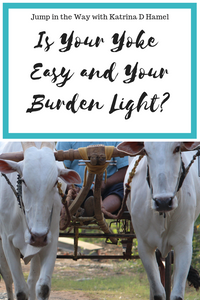 Does your faith weigh you down? Does it chafe and rub you raw? It might be time to see if you're carrying more than you should! Find out how to have a light burden at Jump in the Way with Katrina D Hamel