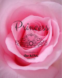 An Imperfect Princess Birthday Party at Jump in the Way with Katrina D Hamel https;//katrina-d-hamel.com