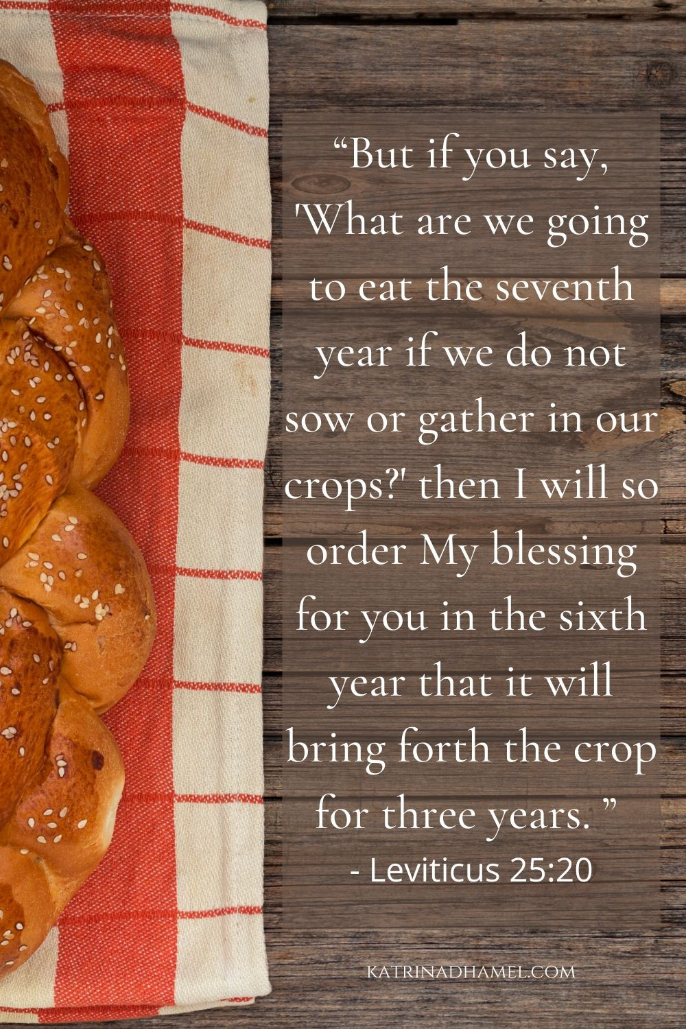 Leviticus 25:20 on a background of Shabbat bread
