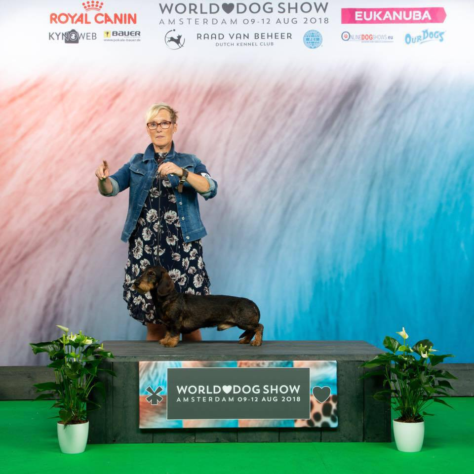 Worlddogshow