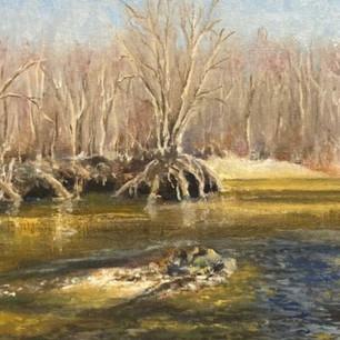Salmon Brook, Behind dog park