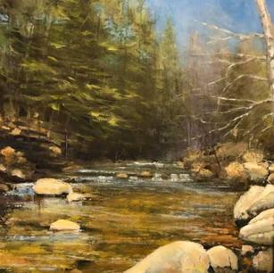 East Branch, Salmon Brook 2