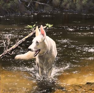 Roxy at Salmon Brook